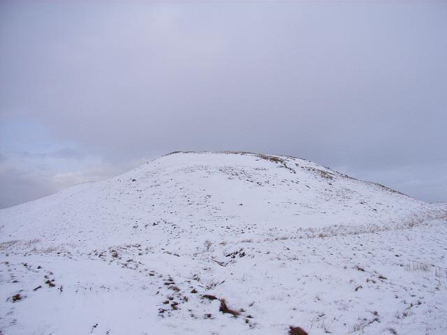 Bullman Hills