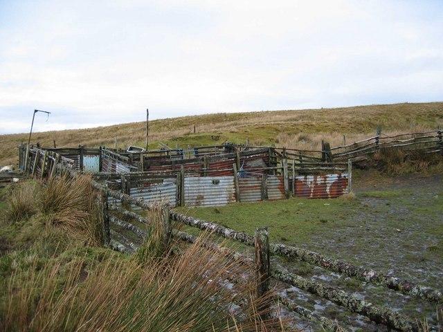 Sheepfold near Inverarish