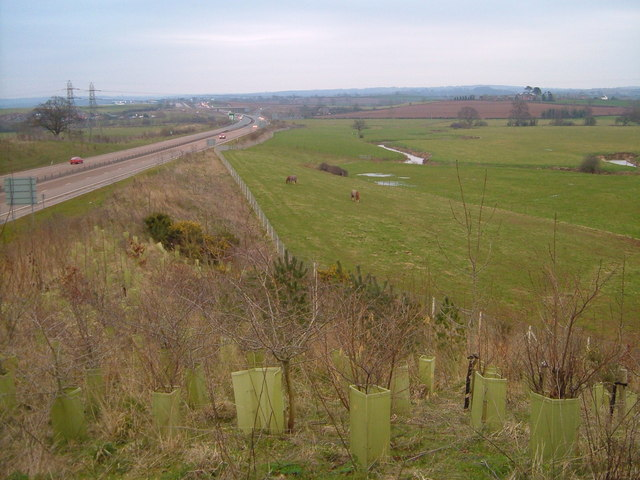 A30 crossing Clyst Valley