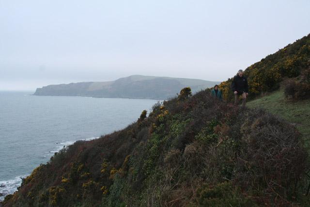Lansallos: coast path at Lansallos Cliff