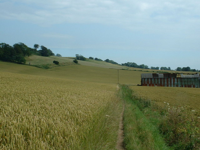 The Pilgrim's Way near Cobham Farm