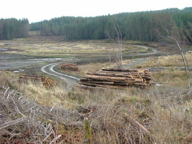 Track to Rubha na Sgianadin