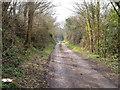 SX9294 : Belvidere Road, Exeter by Derek Harper