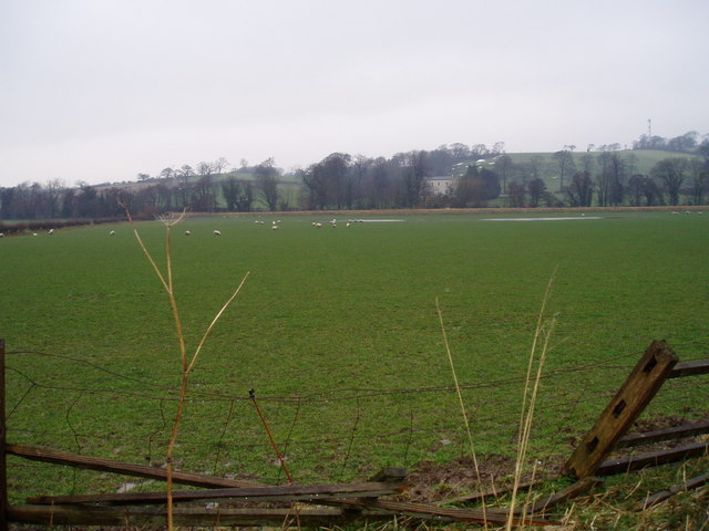 Grazing land near Llong