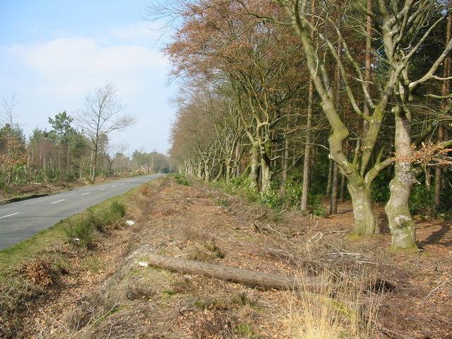 Ringwood to Alderholt Road Hampshire