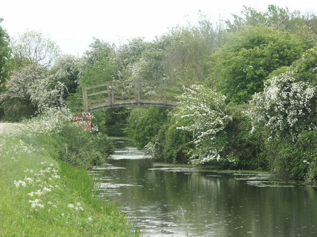 Bridle Bridge: footbridge in the shrubbery, Grantham Canal