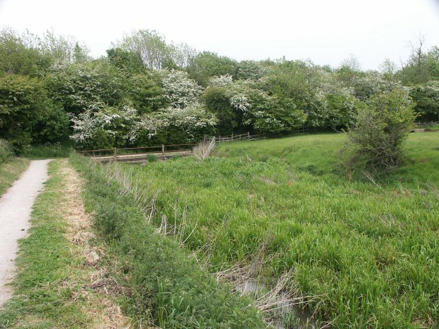 Grantham Canal obstacle
