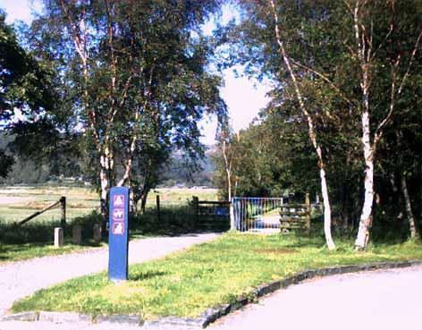 Mawddach Trail - towards Dolgellau at Penmaenpool