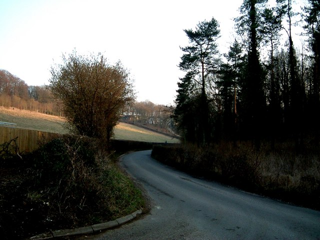 Lane through Hadden's Plantation, Chesham Vale