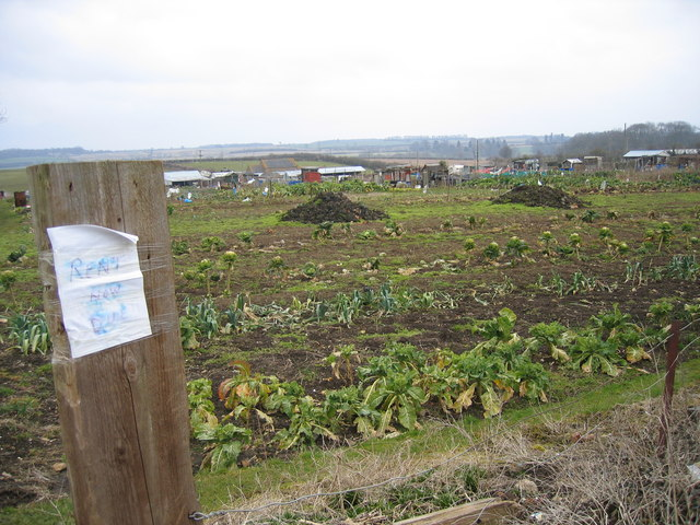 Allotments Rushton Road Rothwell