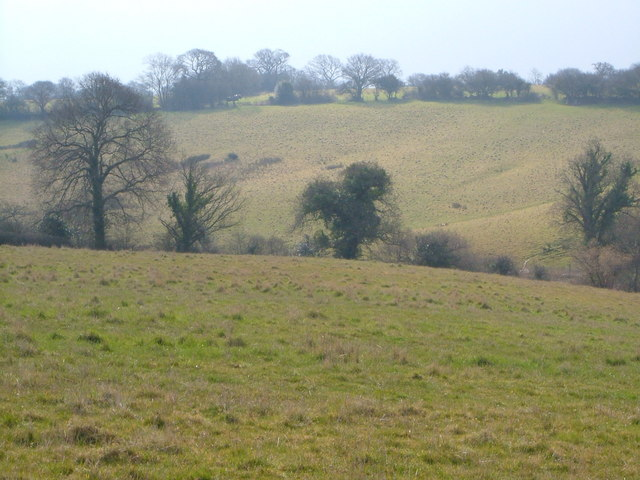 Fields near Goffin's Farm