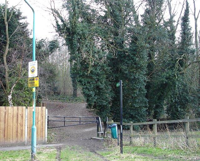 Fox Burrow Wood
