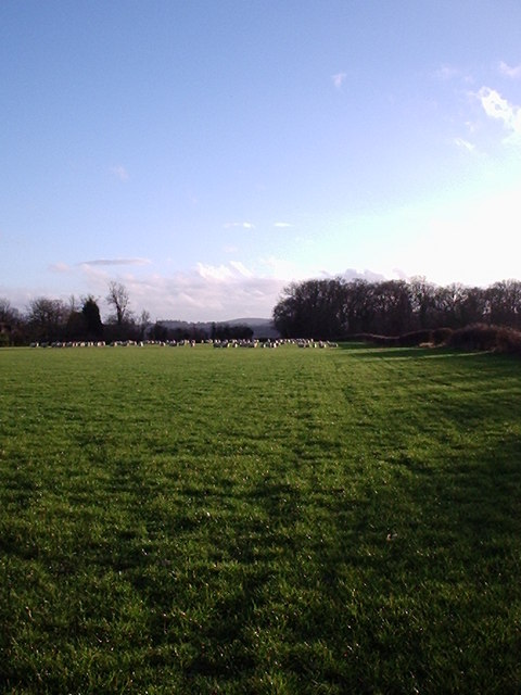 Battlefield at Wash Common