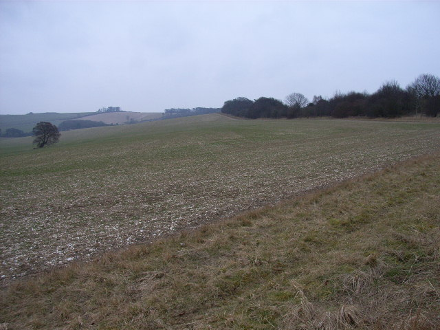 Farmland, northern side of Swyncombe Downs