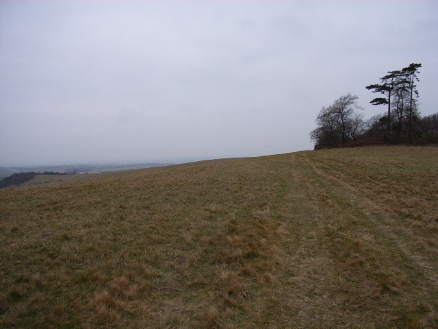 The top of Swyncombe Downs