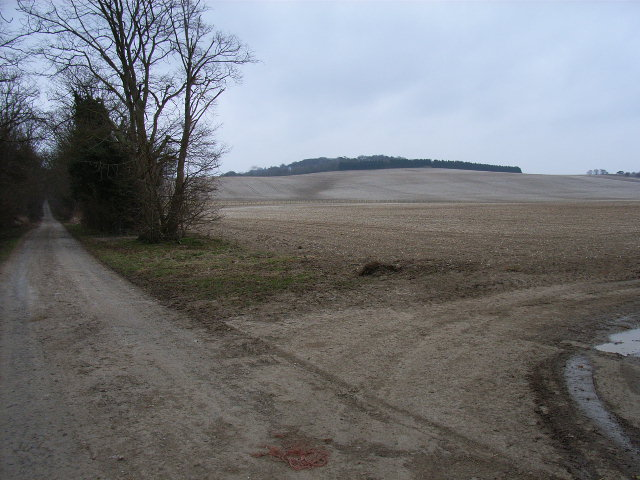 Farm road, Ewelme Downs