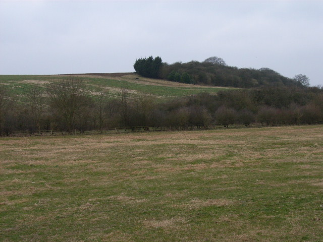 Looking west from Ewelme Down Farm