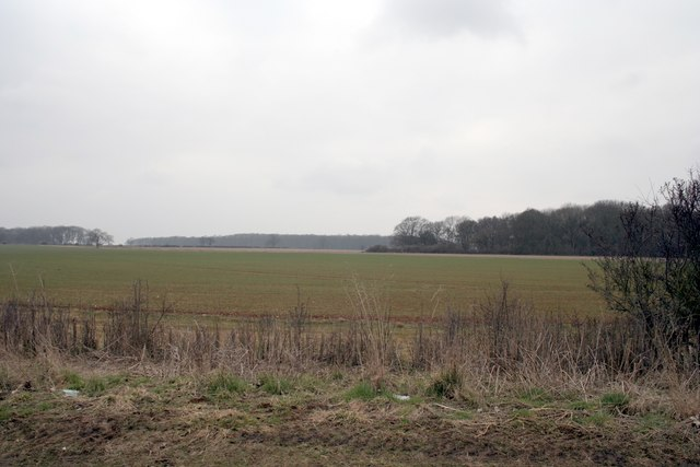 Boundary of the Bloody Oaks woods and fields