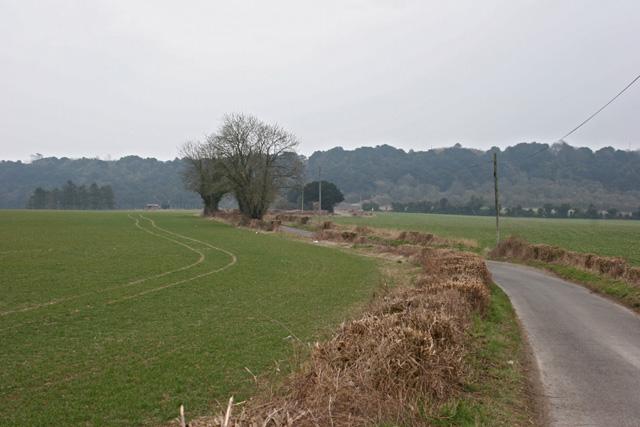 Road heading towards Dean Hill