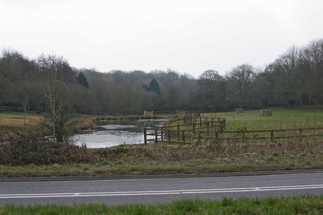Pond near Cowesfield Green