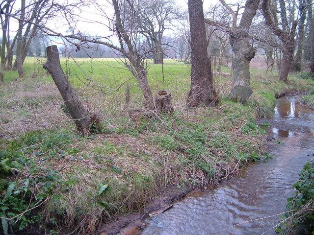 Shutterton Brook