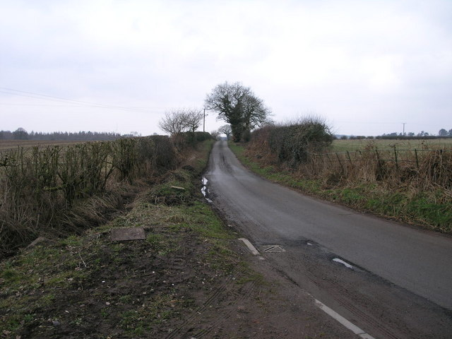 Lane from Tong Forge