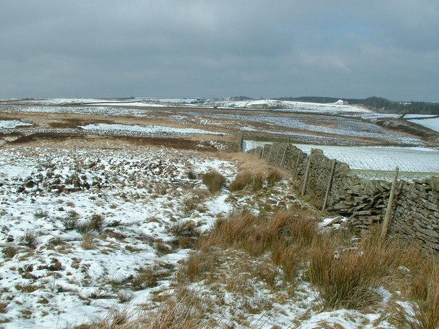 Topping Moor, near Carlecotes