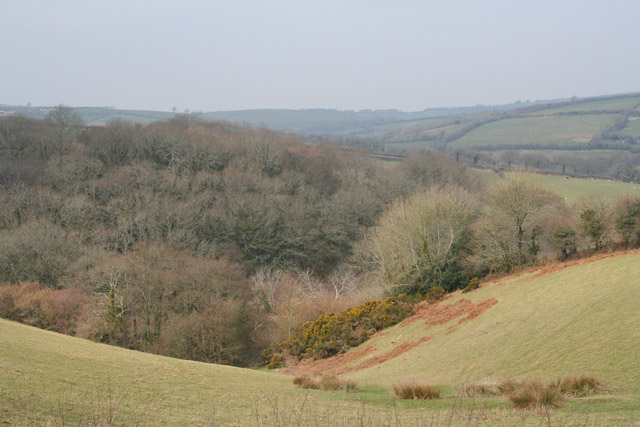 Pelynt: valley west from Pendriffey