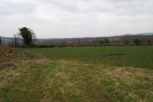 Field Near Cleve Farm