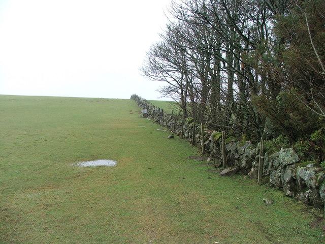 Farmland near Stewartfield.