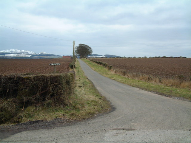 Farm road towards Milestone