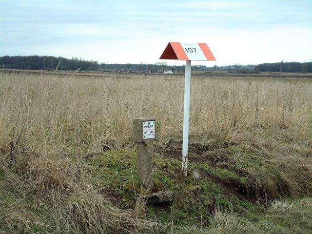 Oil pipeline marker