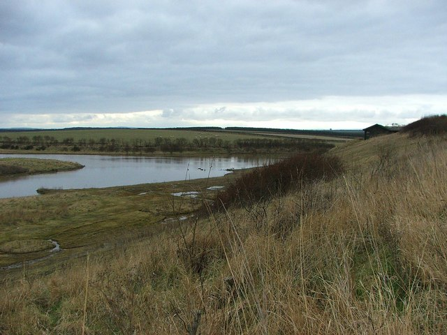 Hauxley Nature Reserve