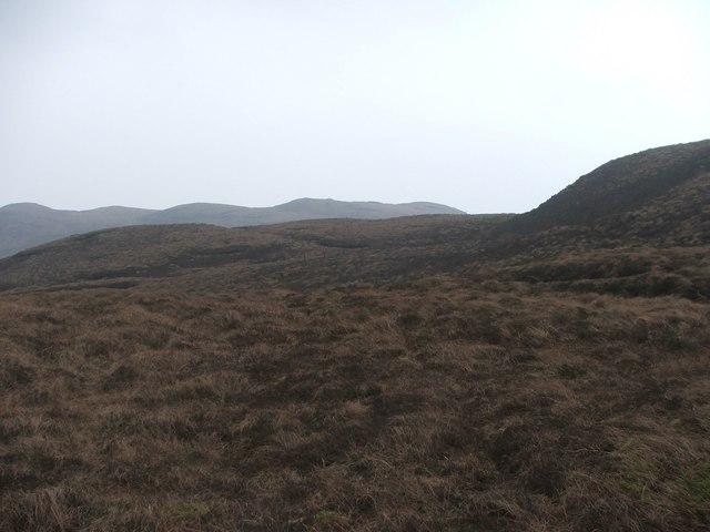Moorland E of Tor Mor.