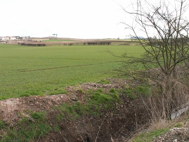 Farmland by Duniface
