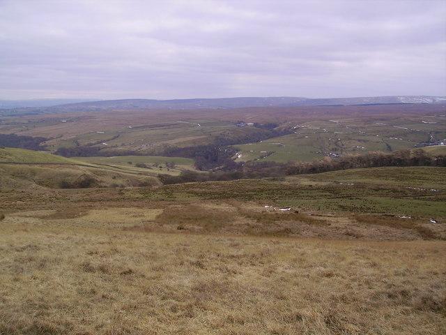 Roeburndale from Whit Moor