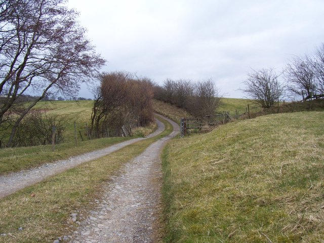 Farm lane to Newbiggin Grange