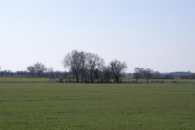 Westbury Moor