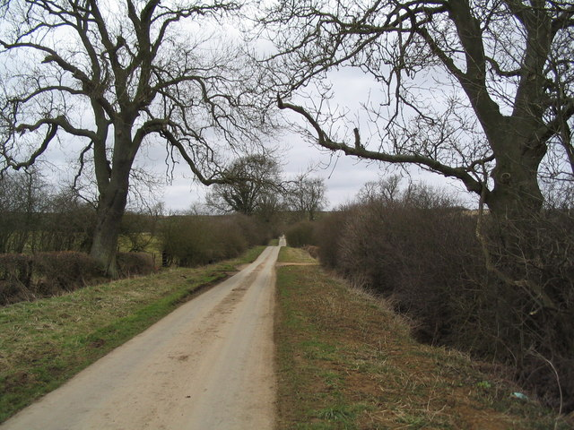Lane to College Farm