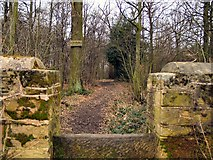 SK4095 : Stile into Rockingham Wood by Roger May