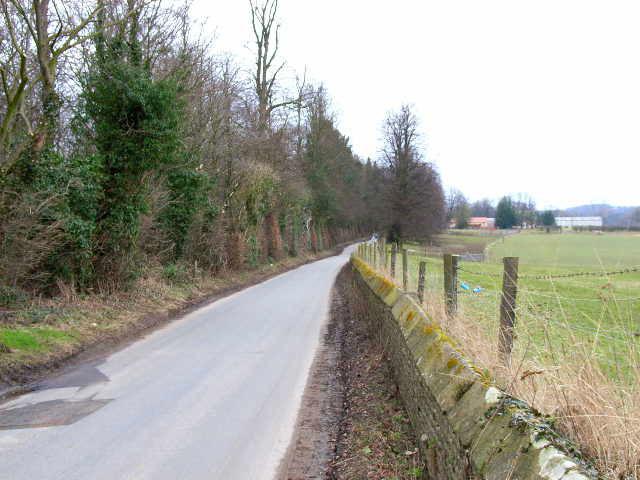 Road alongside Scruton Park