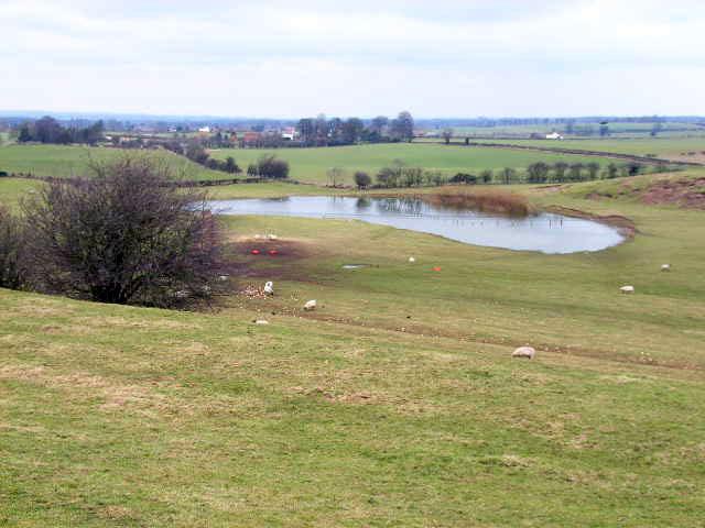 Pond near Little Fencote
