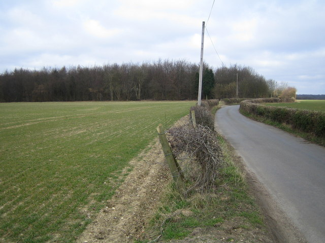 Latimer: Codmore Wood