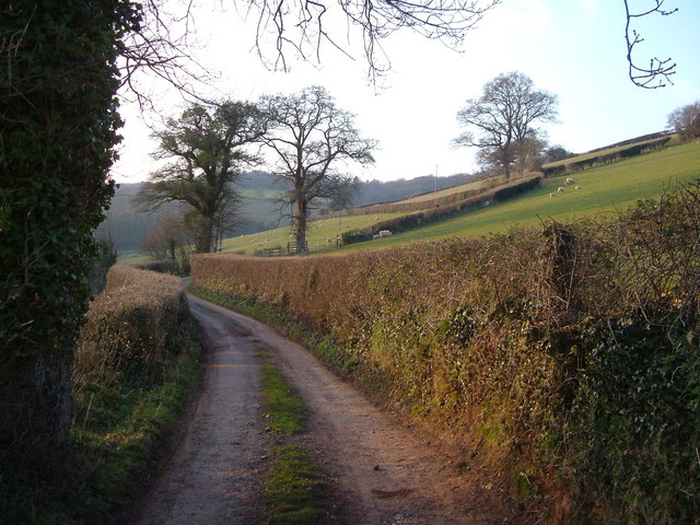Lane to Smallacombe Farm