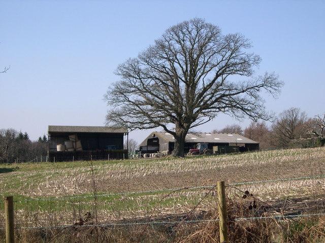 Quagg Farm