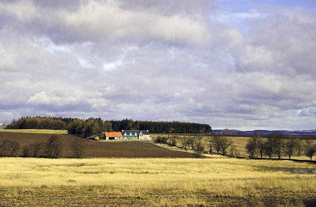 Rushfield Farm