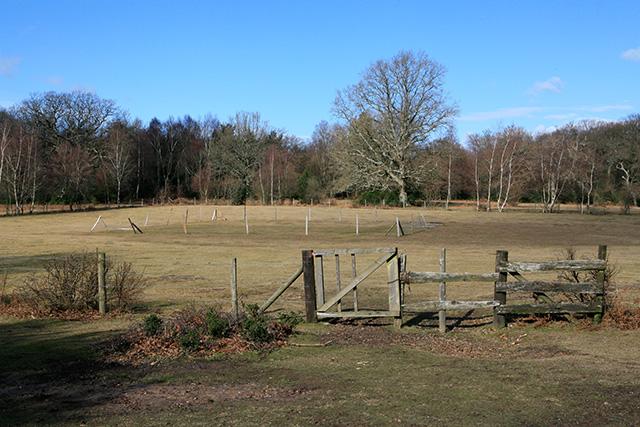 Bartley Cricket Ground