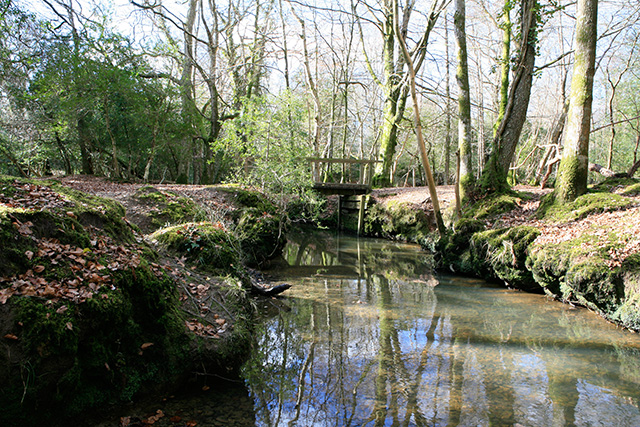 Footbridge outwith Busketts Lawn Inclosure