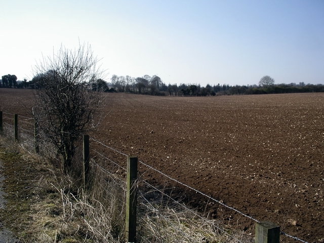 Fields at Larkwhistle Farm