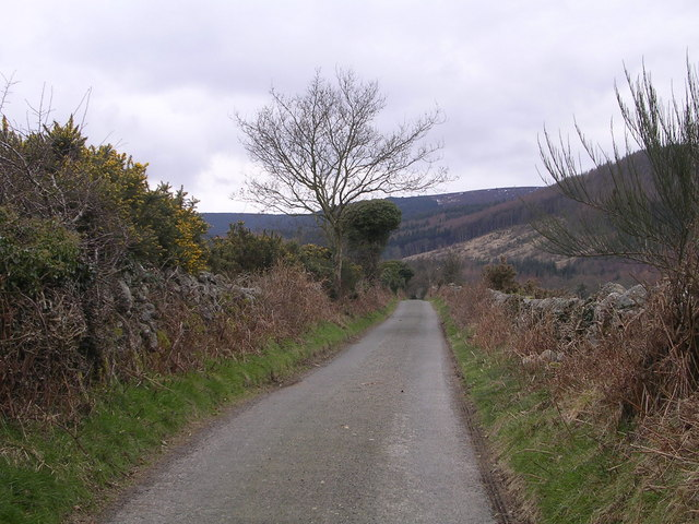 Road Leading to Criffel